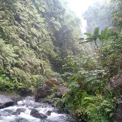 Candikuning Waterfall