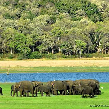 Tour Plan Sri Lanka
