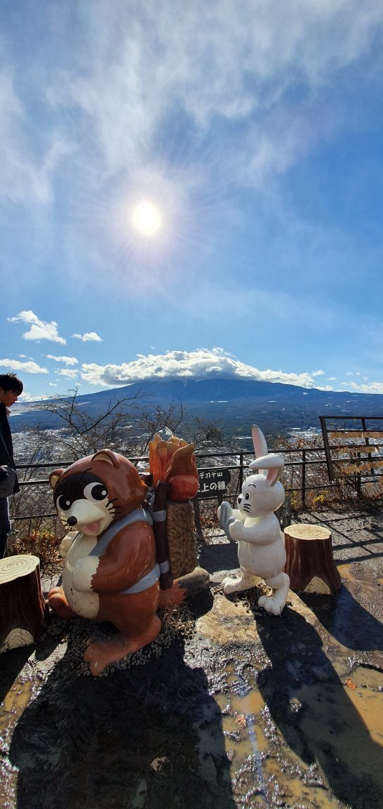 A Great Way to Enjoy the View of Mt. Fuji