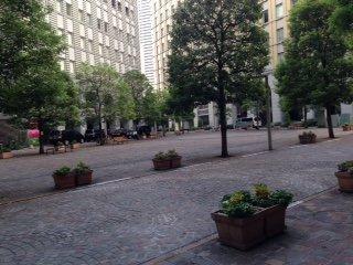 Italia Street