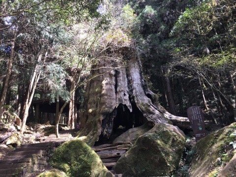 Tian Di Yan