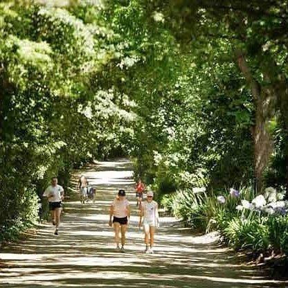 The TAN Track Melbourne