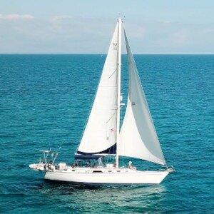 Sailing Satori