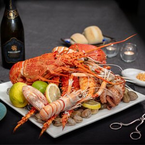 The Altitude   Fresh Seafood & Fine Dining Restaurant in Hobart