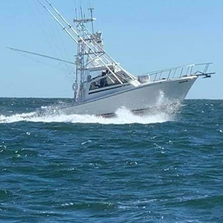 Tailwrapped Sportfishing Charters