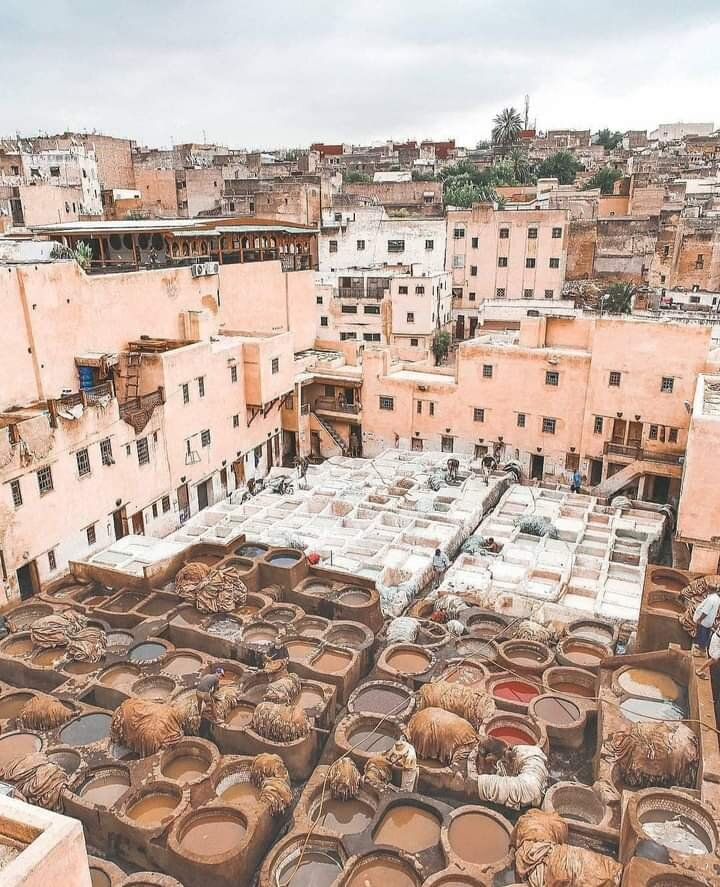 Excursion Marrakech Agafay Safari
