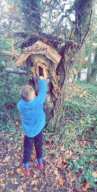 Woodland Fairy Trail