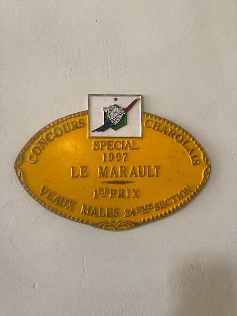 1º prémio concurso charolês 1997