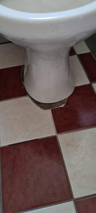 Tiles around toilet