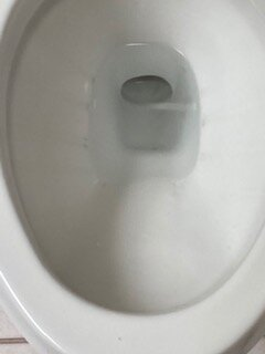 Dirty toilet inside and out