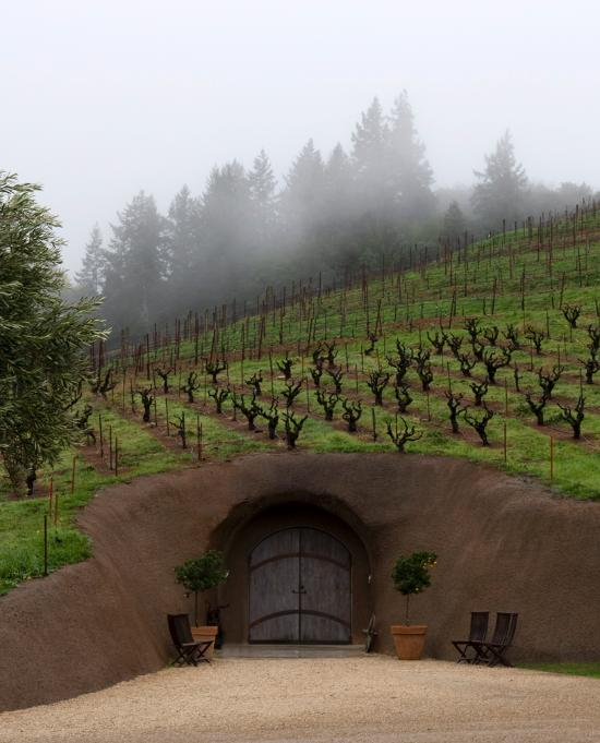 Misty Creek Apartments: Really Cool Small Wine Maker, Esp. For Zin Fans!