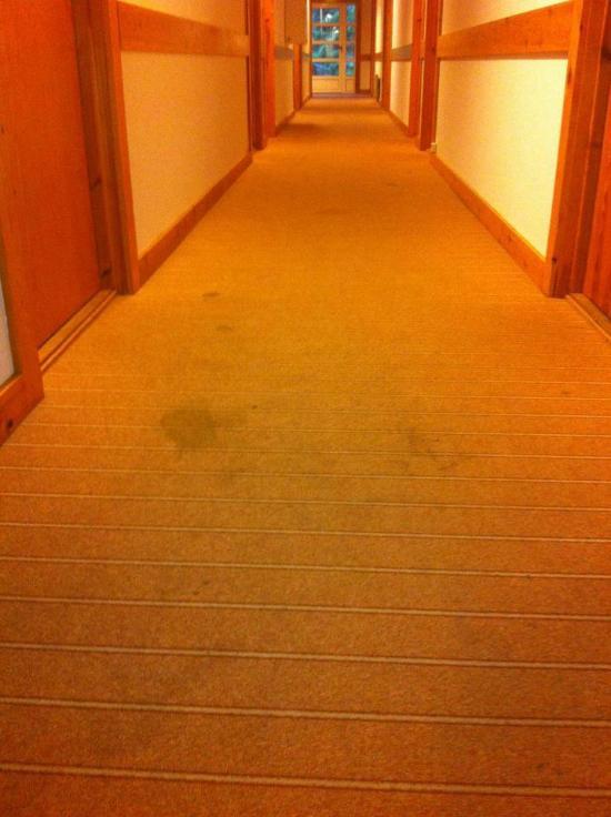 Stetind Hotell