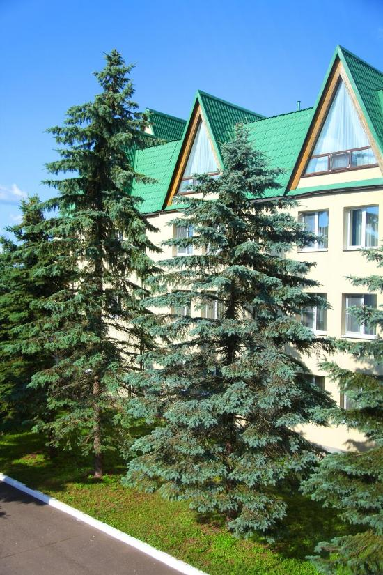 Emmaus Volga Club Country Hotel
