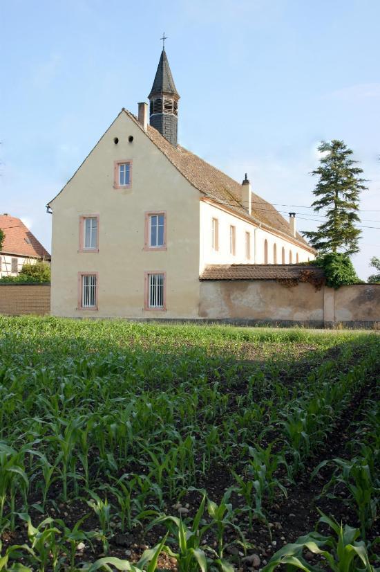 Ambiance jardin bewertungen fotos preisvergleich for Ambiance jardin diebolsheim