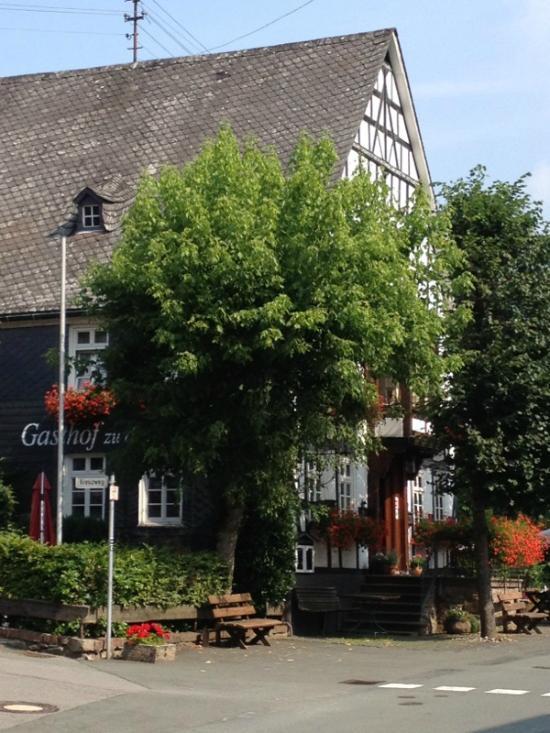 Gasthof & Pension zu den Linden