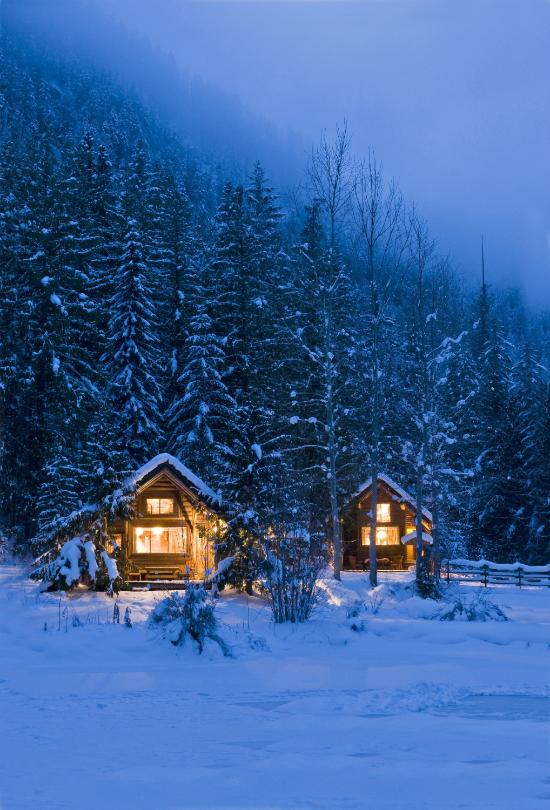 Cozy Cabins Nature Resort