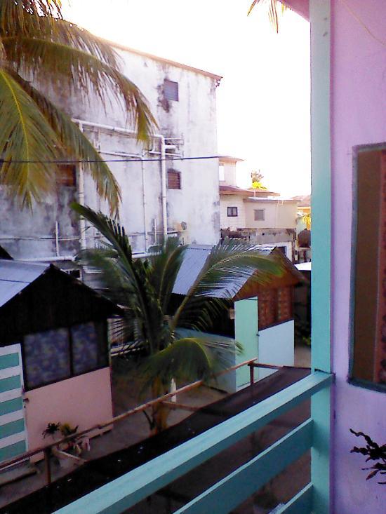 Tropical Oasis Hostel
