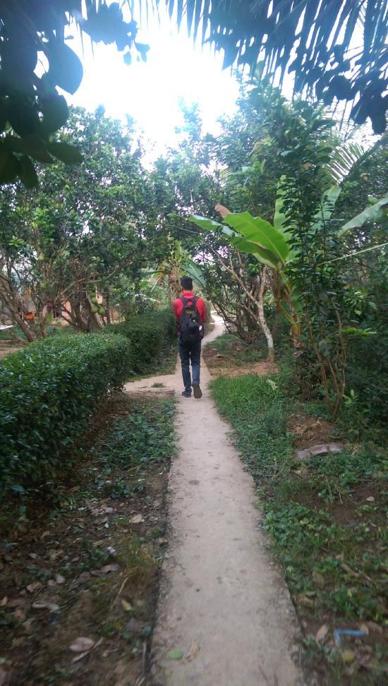 My hoa mekong homestay vinh long vietnam voir les for Jardin du mekong homestay