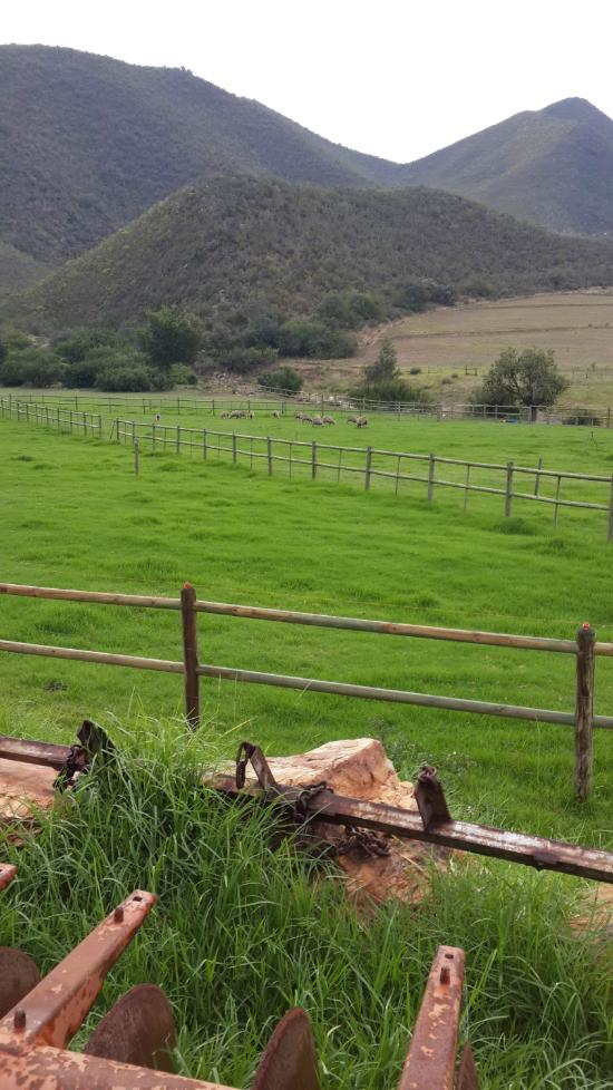 Ragels Rivier Guest Farm