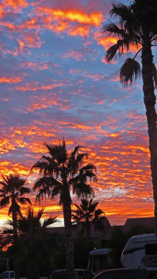 Las Vegas Rv Resort Campground Reviews Nv Tripadvisor
