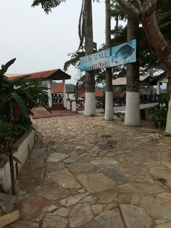 Palm Hill Hotel