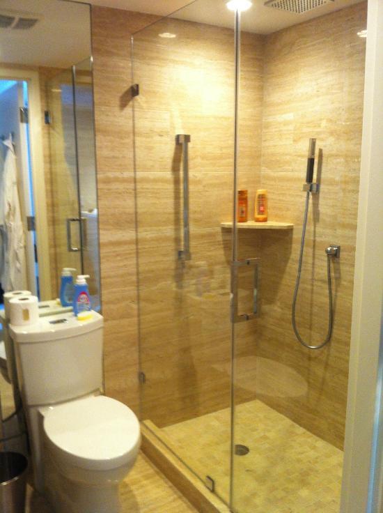 salle de bain (la plus grande) douche XXXL