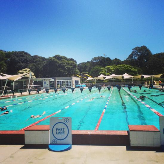 Prince alfred park pool surrey hills australia top for Garden hills pool hours