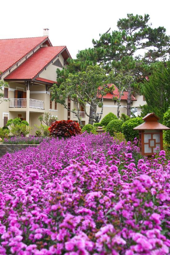 Hoang Anh Resort