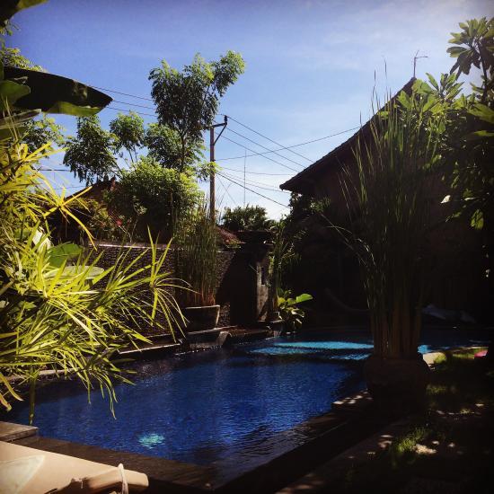 Best Hotels In Bali Tripadvisor: Praschita Bali (Sanur, Indonesia)