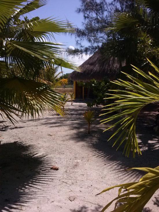 Cabanas L'Aldea