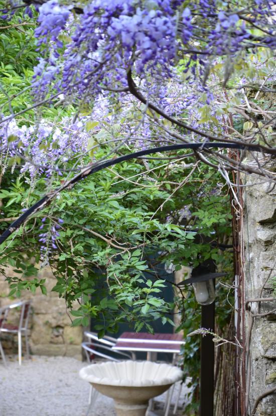 Le jardin carcassonne restaurantanmeldelser tripadvisor for Le jardin carcassonne