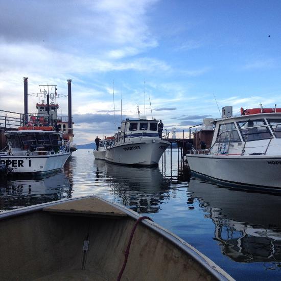 Tahoe sport fishing south lake tahoe ca from us 113 for South lake tahoe fishing charters
