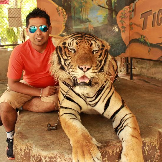 Sriracha Tiger Zoo (Chonburi, Thailand): Top Tips Before You Go - TripAdvisor