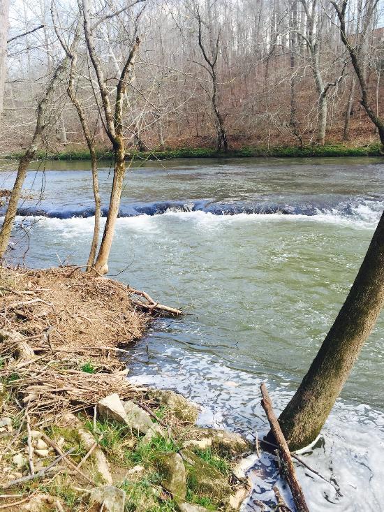 Southe Chickamauga Creek at Elsie A Holmes Nature Park