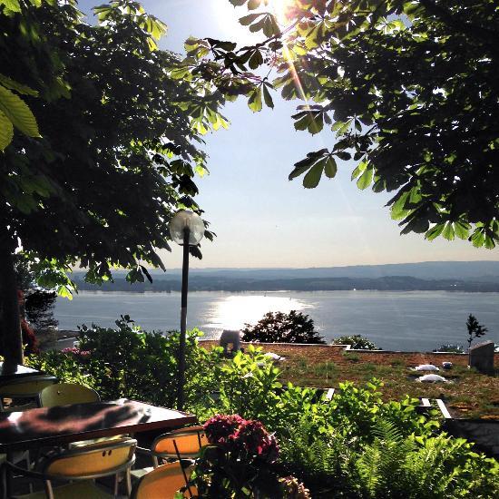 Hotel restaurant guggital updated 2017 prices reviews for Fischmart zug