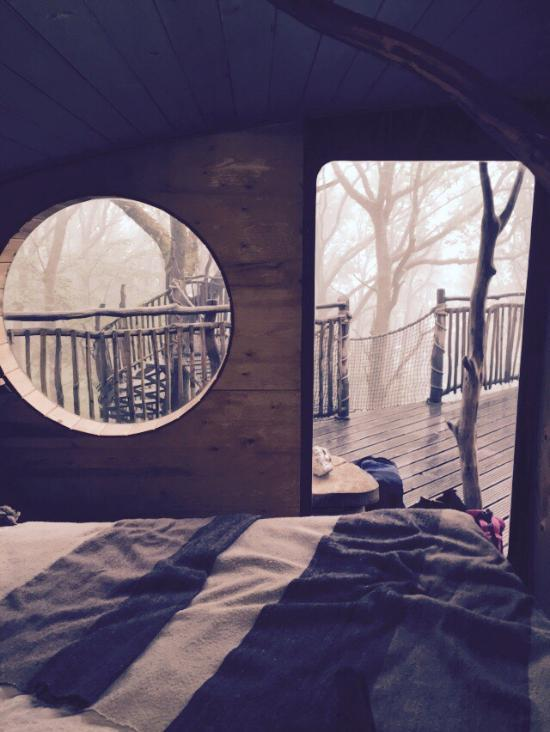 Living room treehouses from 160 machynlleth cottage for 8 living room tree houses powys