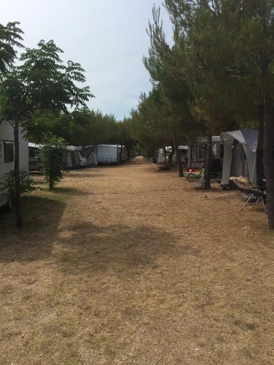 Camp Bakija
