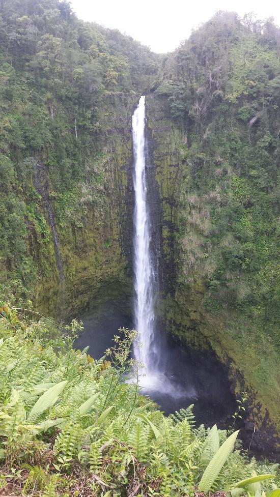 Akaka Falls Hawaii Paradise