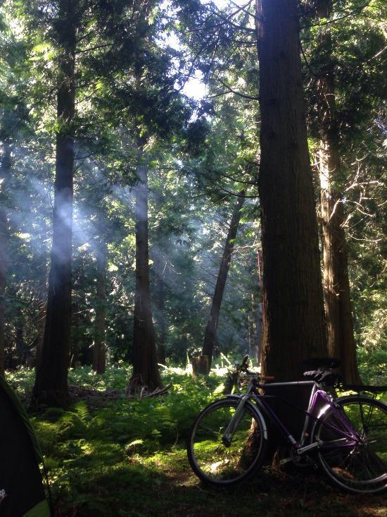 Inwood Camping