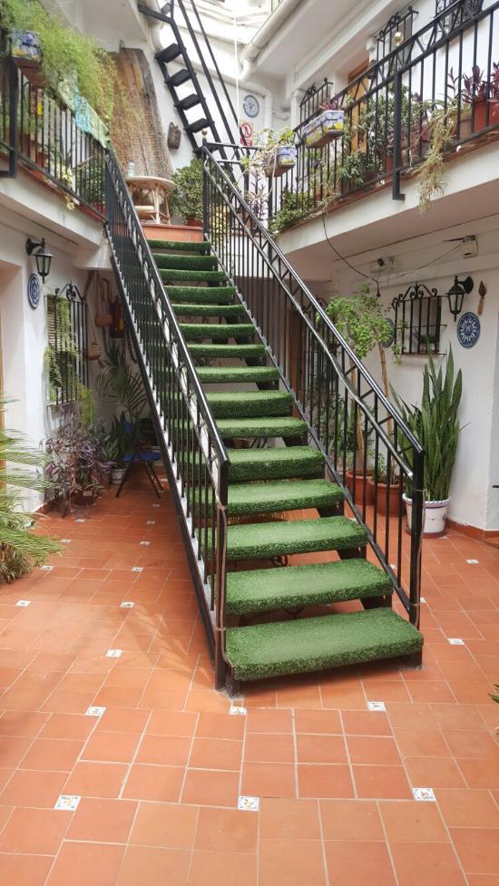 Hostal El Patio (Alhaurín De La Torre, Málaga): Opiniones, Comparación De  Precios Y Fotos Del Pensión   TripAdvisor