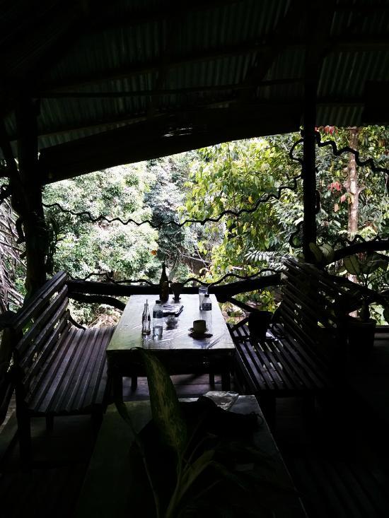 Green Lodge Tangkahan