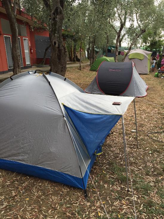 Parco per Vacanze - Campeggio Lo Scoglio