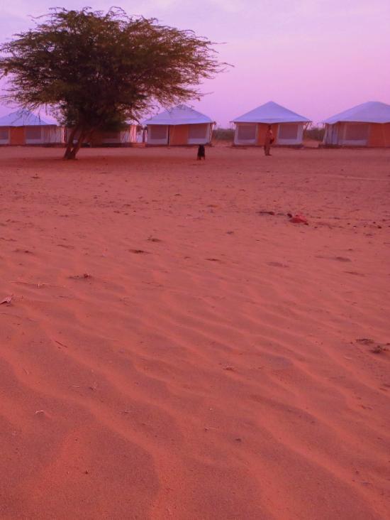 Desert Adventures Camps and Safari
