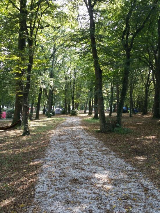 Campingplatz Muenchen Obermenzing