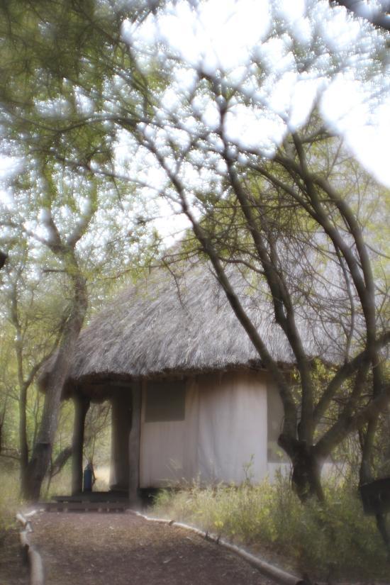 Ndarakwai Ranch Camp
