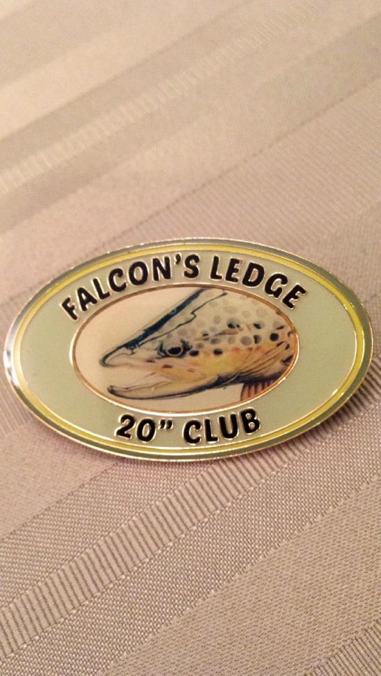 Falcon's Ledge Lodge