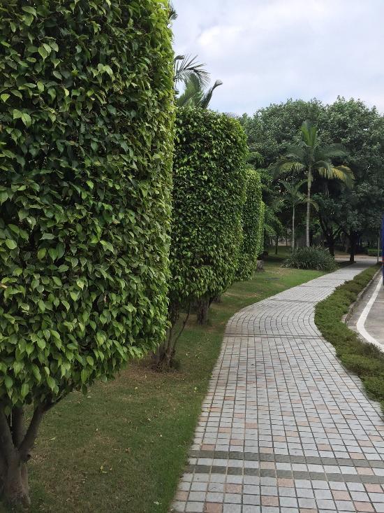 Baicao Garden Hotel