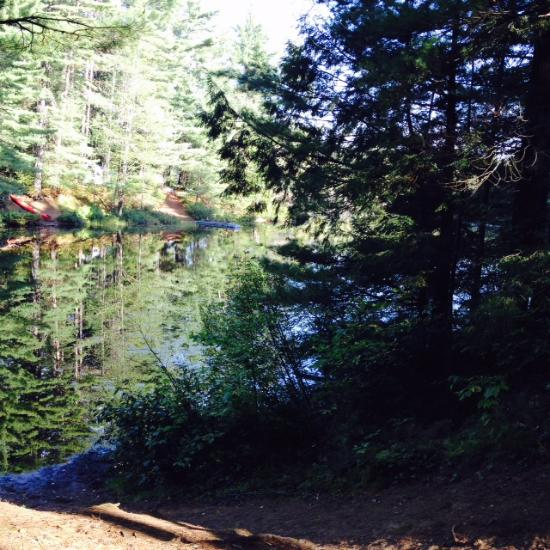 Fish creek pond campground updated 2017 reviews saranac for Fish creek pond