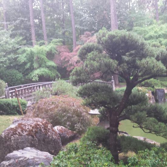 Nishinomiya Tsutakawa Japanese Garden Nishinomiya Tsutakawa Japanese Garden