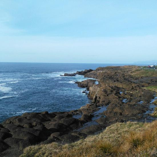 Vacation Rentals In Lincoln City Or: Roads End State Recreation Site (Lincoln City, OR): Top